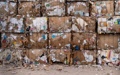 Co vše se dá považovat za recyklaci odpadu, či v  jaké fázi sběru, dotřiďování a zpracovávání odpadu bychom měli zjišťovat, jak velká část ho byla zrecyklována?